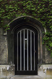 Typical Old English Entrance door with ivy Royalty Free Stock Photo