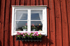 Typical old Swedish little red house Royalty Free Stock Images