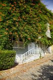 The house wreathed with Campsis creeper on the Street of the Cold Fountain royalty free stock images