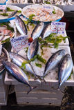 Typical outdoor Italian fish market with fresh fish and seafood, Stock Photo