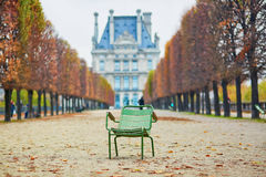 Typical Parisian park chair in Tuileries Garden. Paris Royalty Free Stock Image