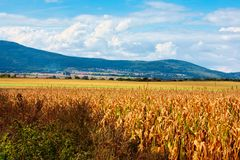 Typical Polish landscape Royalty Free Stock Photography
