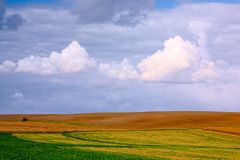 Typical Polish landscape Royalty Free Stock Images