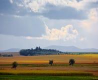 Typical Polish landscape Stock Image