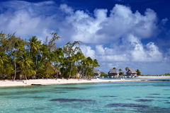 Typical Polynesian landscape - seacoast with palm trees and small houses Royalty Free Stock Photos