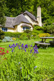 Typical quaint English thatched roof cottage. England. May 23 2014 : Typical quaint English thatched roof cottage in an English village setting Royalty Free Stock Photo
