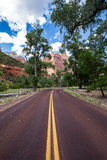 Typical red road in Zion National Park, Utah, USA Stock Photos