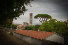 Typical red roofes with stone pine and San Frediano church belfry on background. Vignette effect. Lucca. Italy. Royalty Free Stock Image