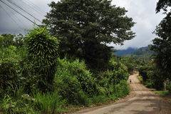 Typical Road In Costa Rica. Typical windy road in Costa Rica Mountains Royalty Free Stock Photography