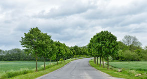 Typical road landscape in Walloon Royalty Free Stock Photos