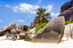 Typical rock formations in Seychelles islands Royalty Free Stock Photo