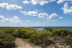 Coast of Crete island. Typical rocky with small trees coastline on Crete  , Greece , Europe Stock Photo