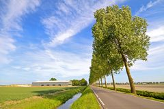 Typical rural dutch landscape Stock Photography