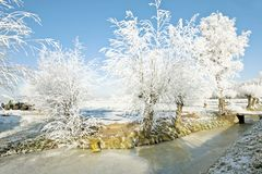 Free Typical Rural Dutch Landscape In Winter Royalty Free Stock Images - 21605339