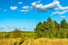 Typical rural landscape of Kursk region, Russia stock photography