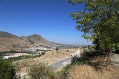 Typical rural landscape with olives and corn fields. Andalusia, Spain Royalty Free Stock Images