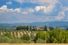 Summer landscape in the Chianti region Tuscany. Typical rural landscape in the region of Chianti, in Tuscany, Italy, in a sunny summer day. Olive trees stock photo