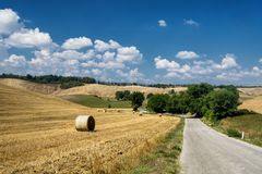 Summer landscape in the Chianti region Tuscany. Typical rural landscape in the region of Chianti, in Tuscany, Italy, in a sunny summer day stock photography