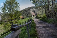 Typical rural road with provincial landscape in Arieseni, Romania.  royalty free stock photography