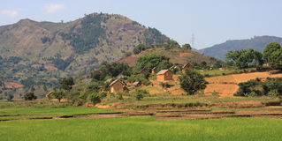 Typical rural view of Madagascar Stock Image