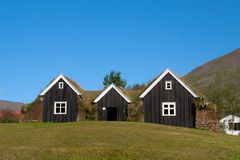 Typical scandinavian houses. With grass on the roof Royalty Free Stock Images