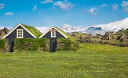 Typical scandinavian houses with grass on the roof Royalty Free Stock Photo