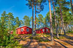 Typical Scandinavian Houses in Pine Forest Stock Photos