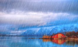 Typical scandinavian Red house on sea in fjord in rainy day. Royalty Free Stock Image