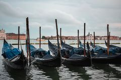 Typical scene of parked gondolas in Venice. royalty free stock images