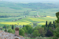Typical scenic Tuscan view. At spring royalty free stock image