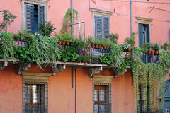 A typical scheme of buildings in Verona town in Italy Stock Photos