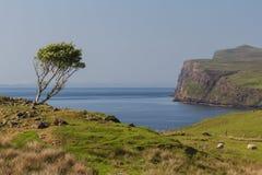 Typical Scottish coast Stock Images