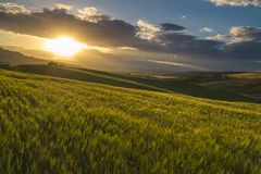 Typical sicilian rural countryside, sicilian home in background Royalty Free Stock Images