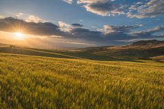 Typical sicilian rural countryside, sicilian home in background Stock Image
