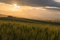 Typical sicilian rural countryside, sicilian home in background Royalty Free Stock Image