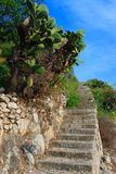 Typical sicilian staircases. In the taormina village with prickly pears Stock Photo