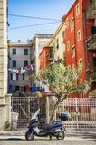 Small street in old town La Spezia, Italy Stock Image