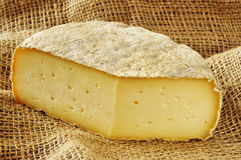Typical soft cheese of Bergamo, Italy Stock Image