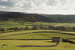 Typical stone barn and flint walls in Yorkshire Dales  Royalty Free Stock Photo