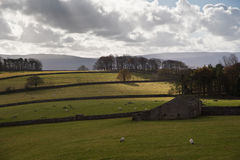 Typical stone barn in Yorks Dales national Park lit by sunlight Stock Photos