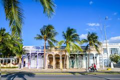 Typical street, Cienfuegos, Cuba. Typical street with palms in Cienfuegos, Cuba Royalty Free Stock Photos