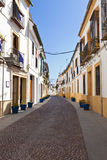 Typical street in Cordoba downtown Stock Image