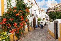 Typical street of Obidos. A medieval fortified town in Portugal Royalty Free Stock Photos