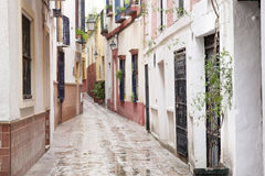 Typical Street in Santa Cruz Neighborhood; Seville Stock Photos