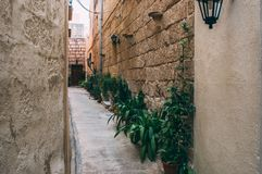 Typical street view in Malta. With plants royalty free stock images