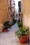 Typical street in Vittorioa royalty free stock photo