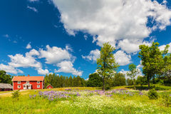Typical swedish farmhouse in spring Stock Images