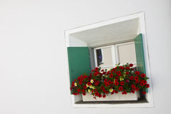 Typical swiss window with shutters in green and colorful flowers Stock Photography
