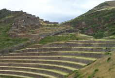 Typical terraces of the Incas. In Peru Royalty Free Stock Images