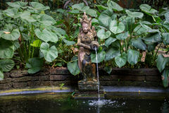 Typical Thai Garden Stock Images